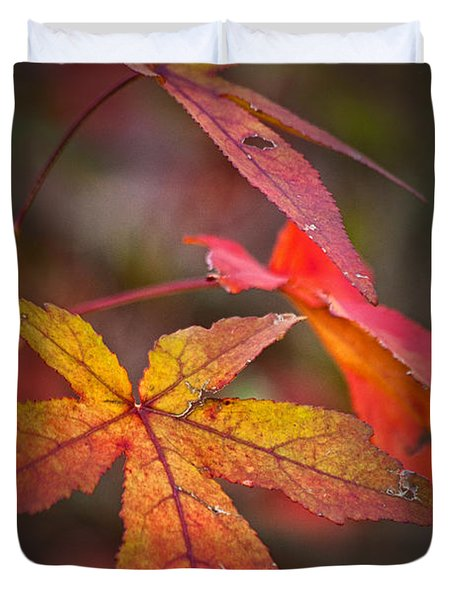 Colors Duvet Cover by Karol Livote