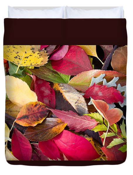 Colors Of Autumn Duvet Cover by Shane Bechler