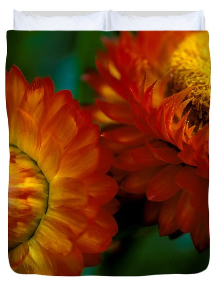 Colors of Fall Duvet Cover by Kathy Yates