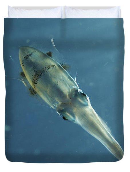 Colourful Squid, North Sulawesi Duvet Cover by Mathieu Meur