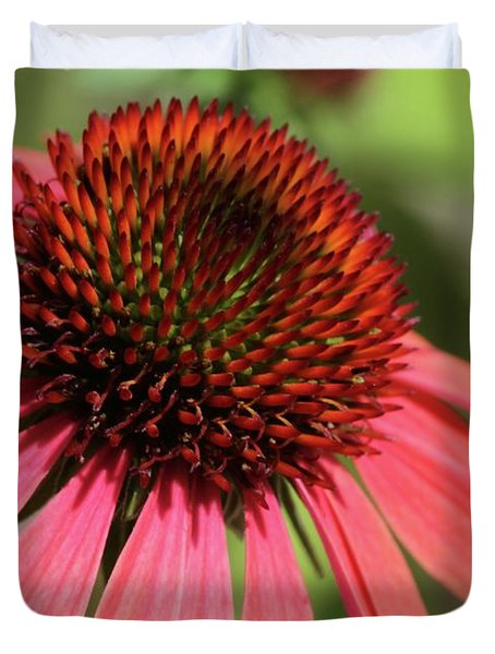 Coral Cone Flower Too Duvet Cover by Sabrina L Ryan
