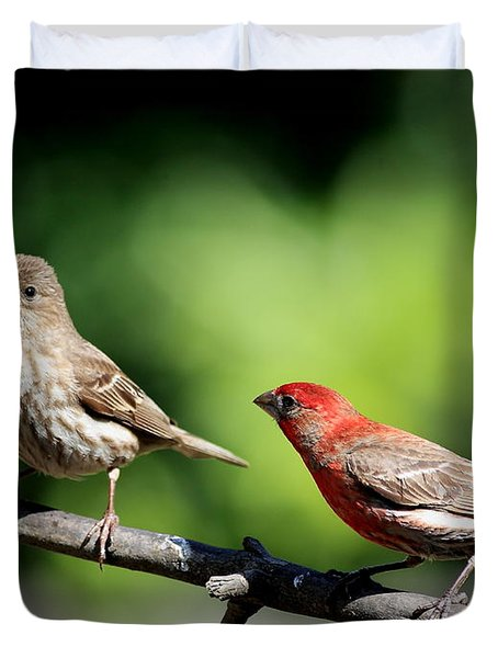 Courtship In Nature . 40D8073 Duvet Cover by Wingsdomain Art and Photography