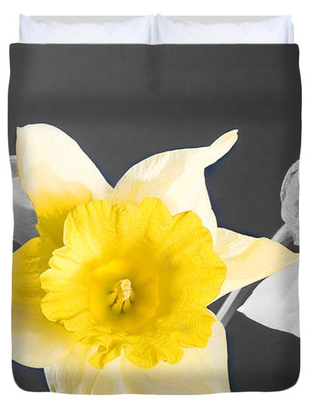 Daffodil Trio  Duvet Cover by Cheryl Young