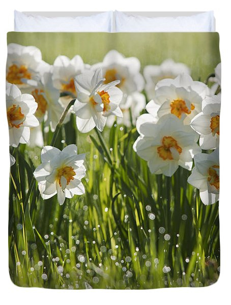 Daffodils In The Dew Covered Grass Duvet Cover by Susan Dykstra