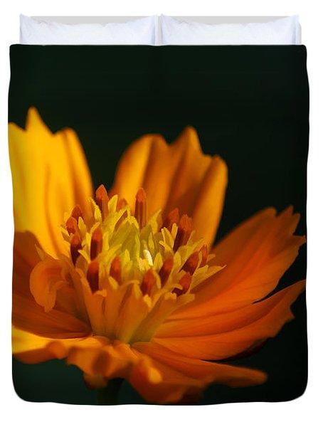 Dappled in the Morning Light Duvet Cover by Darren Fisher