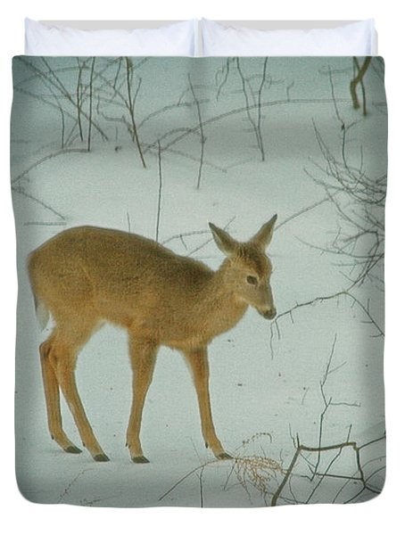 Deer Winter Duvet Cover by Karol Livote