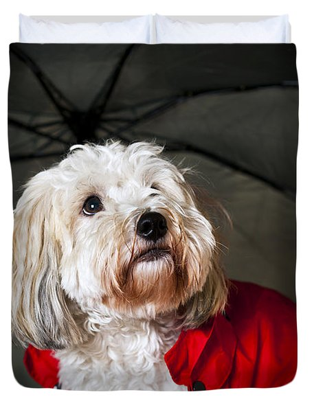 Dog under umbrella Duvet Cover by Elena Elisseeva