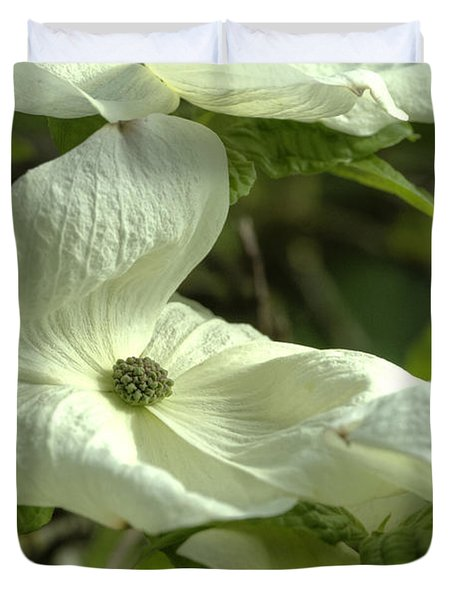 Dogwood Duvet Cover by Rod Wiens