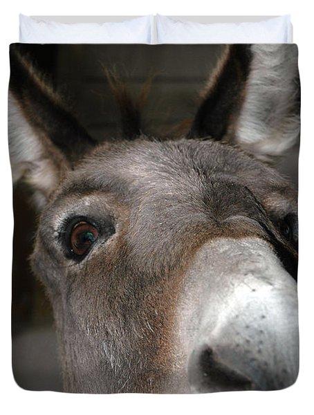 Donkey Sniffs Duvet Cover by LeeAnn McLaneGoetz McLaneGoetzStudioLLCcom