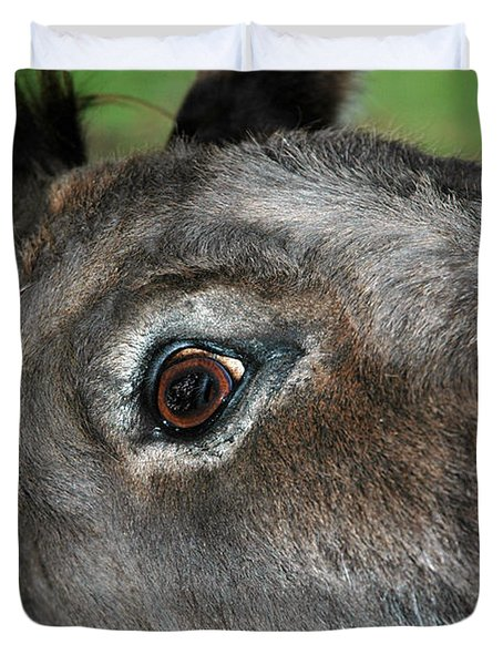 Donkey Stink Eye Duvet Cover by LeeAnn McLaneGoetz McLaneGoetzStudioLLCcom