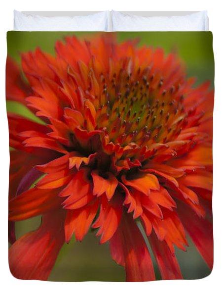 Dreamy Hot Papaya Coneflower Bloom Duvet Cover by Teresa Mucha