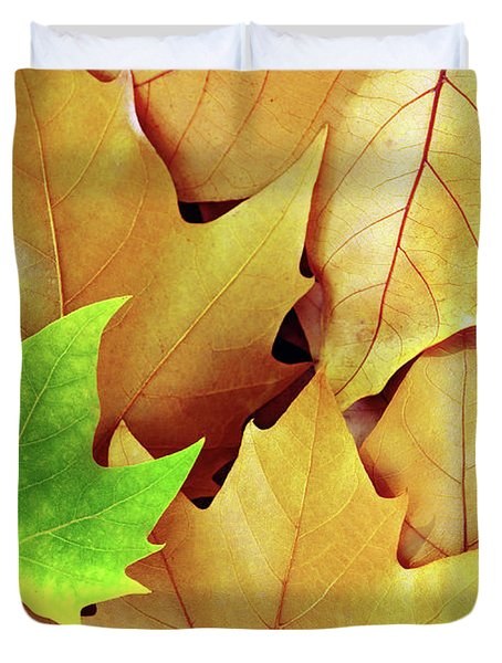 Dry Fall Leaves Duvet Cover by Carlos Caetano