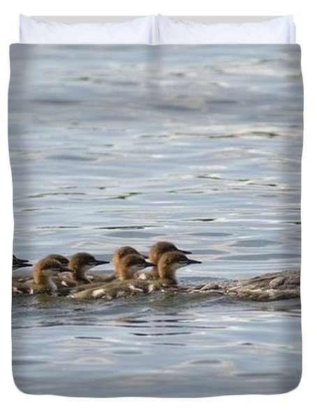 Duck And Ducklings Swimming In A Row Duvet Cover by Keith Levit