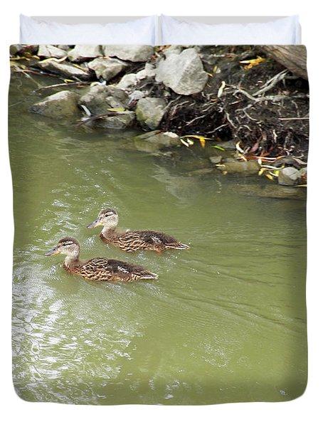 Duckling Pair Duvet Cover by Corinne Elizabeth Cowherd