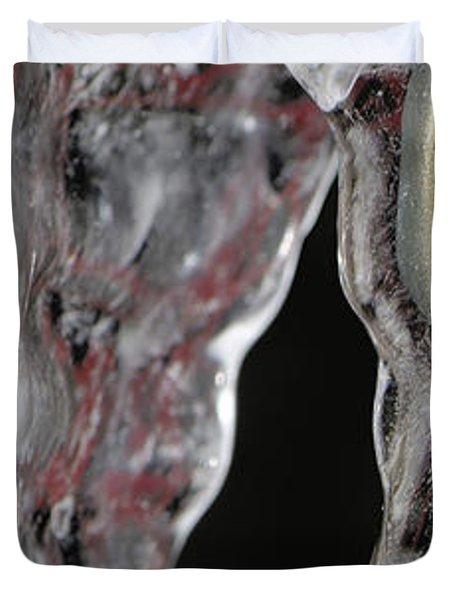 Encased Duvet Cover by Lisa Knechtel