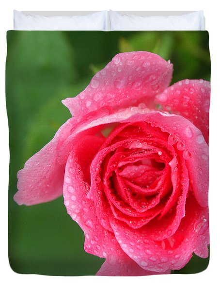 English Rose Duvet Cover by Bonnie Sue Rauch and Photo Researchers