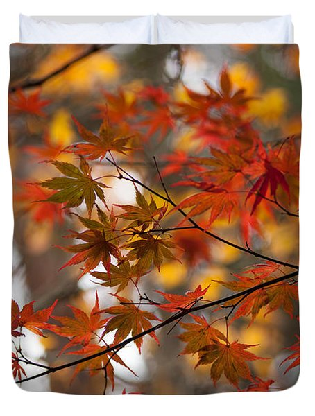 Fall Color Montage Duvet Cover by Mike Reid