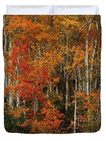 Fall Colors Grand Mesa Duvet Cover by Ernie Echols