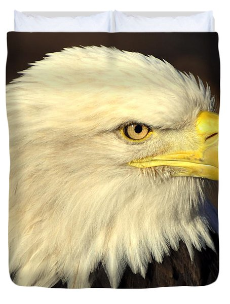 Fall Eagle 1 Duvet Cover by Marty Koch