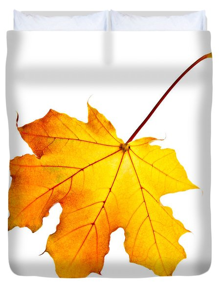 Fall maple leaf Duvet Cover by Elena Elisseeva