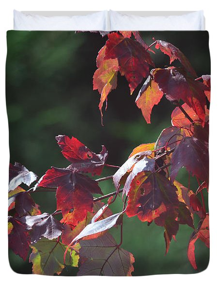 Fall Red Duvet Cover by Sandi OReilly