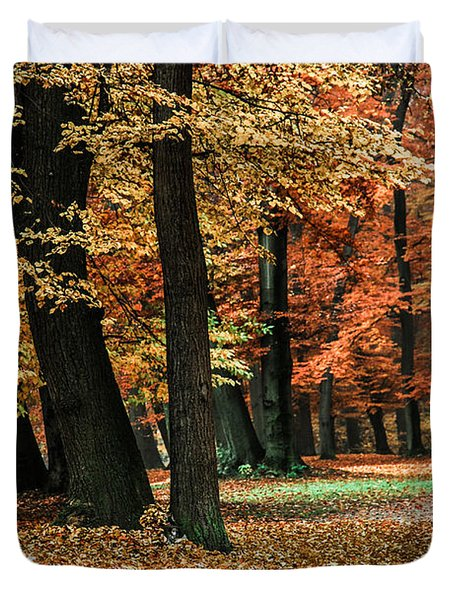 Fall Scenery Duvet Cover by Hannes Cmarits