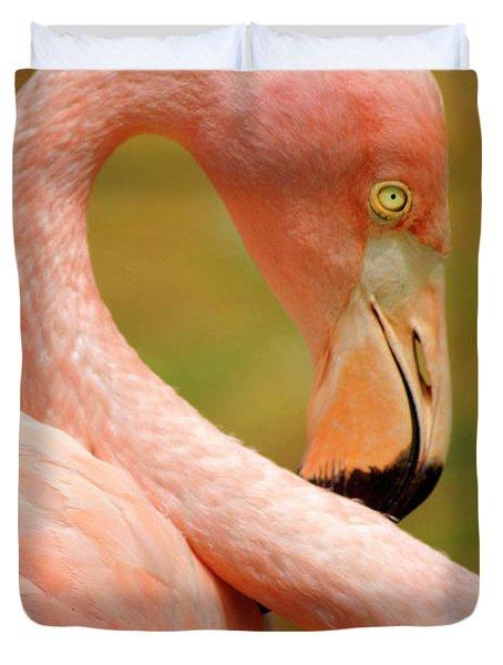 Flamingo Duvet Cover by Carlos Caetano