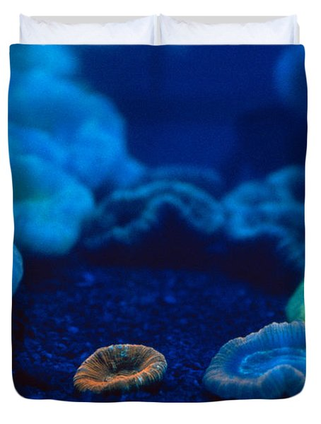 Fluorescent Corals Duvet Cover by Kjell B Sandved and Photo Researchers