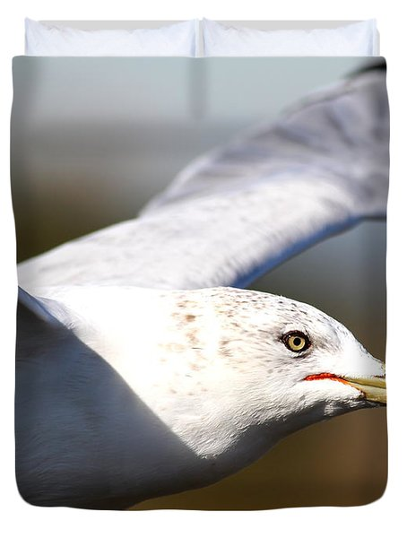 Flying Seagull Closeup Duvet Cover by Wingsdomain Art and Photography