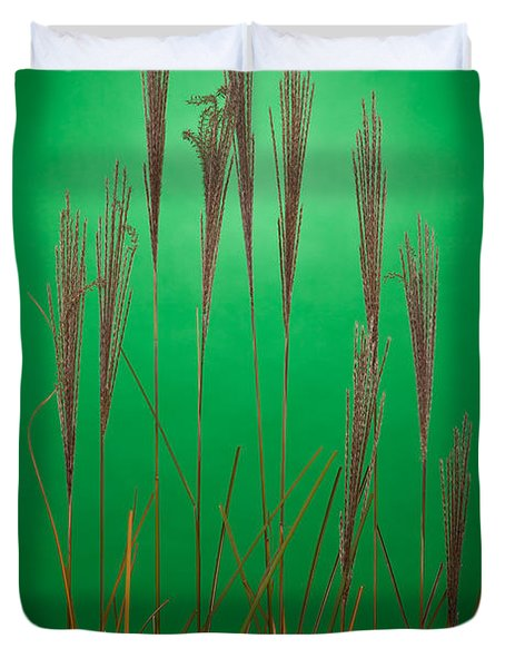 Fountain Grass In Green Duvet Cover by Steve Gadomski