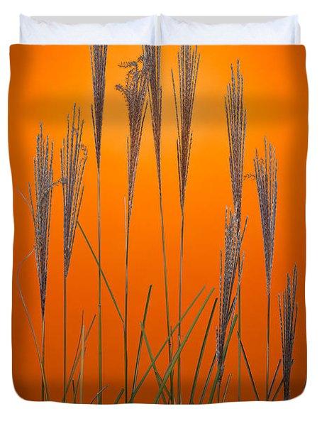Fountain Grass In Orange Duvet Cover by Steve Gadomski