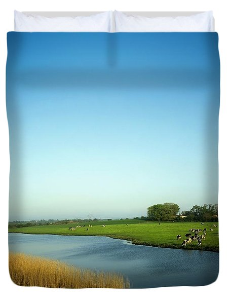 Fresian Cattle, Near Cobh, Co Cork Duvet Cover by The Irish Image Collection