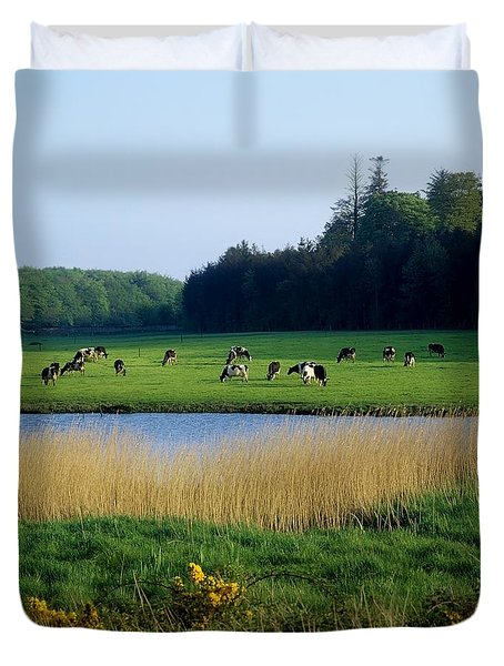 Friesian Cattle, Near Cobh, Co Cork Duvet Cover by The Irish Image Collection