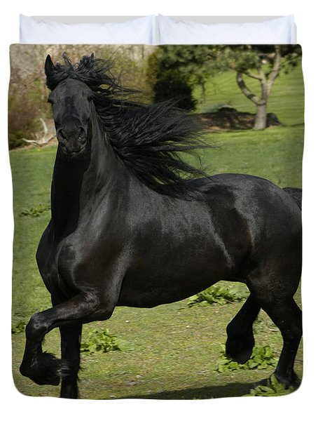 Friesian horse in galop Duvet Cover by Michael Mogensen