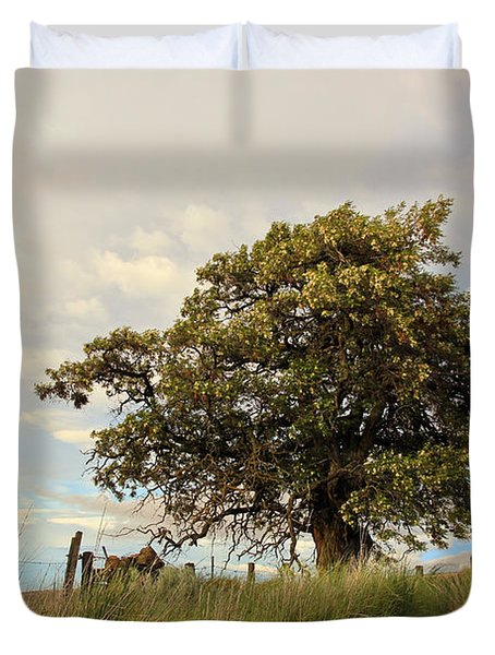 From Dusk to Dawn II Duvet Cover by Athena Mckinzie