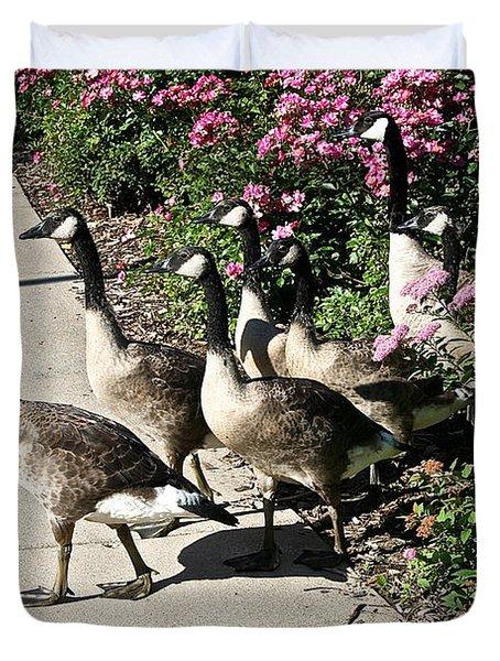 Garden Geese Parade Duvet Cover by Susan Herber