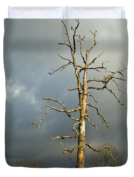 Ghost Tree Duvet Cover by Douglas Barnett