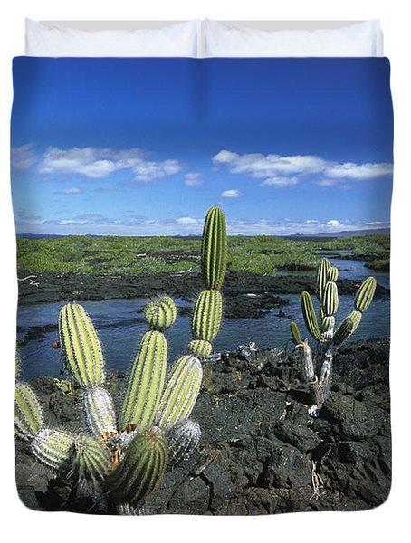 Giant Candelabra Cactus Jasminocereus Duvet Cover by Winfried Wisniewski