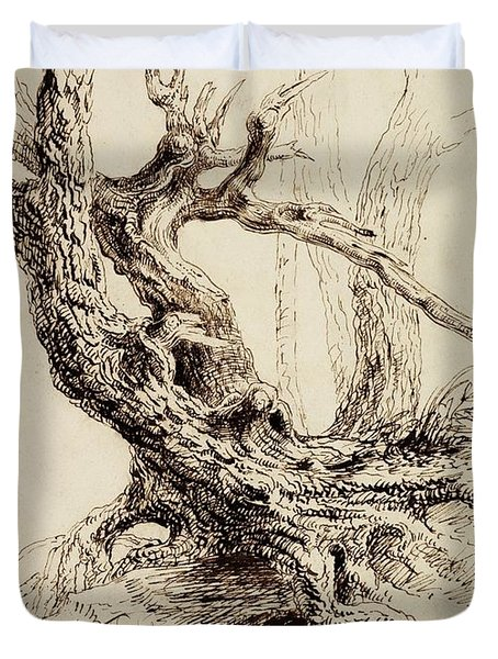 Gnarled Tree Trunk Duvet Cover by Thomas Cole