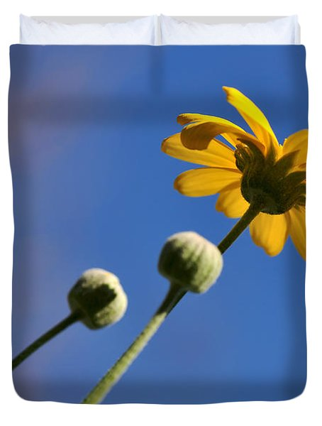 Golden Daisy on Blue Duvet Cover by Kaye Menner