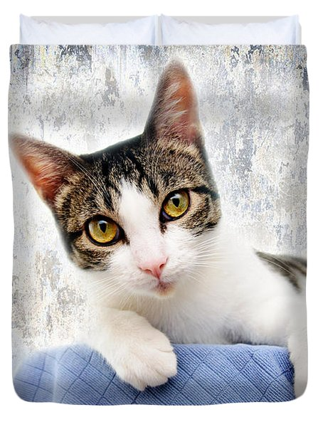 Grand Kitty Cuteness 2 Duvet Cover by Andee Design