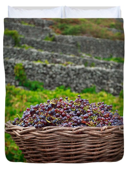Grape harvest Duvet Cover by Gaspar Avila