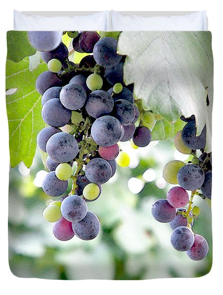 Grapes On The Vine Duvet Cover by Glennis Siverson