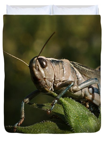 Grasshopper 2 Duvet Cover by Ernie Echols