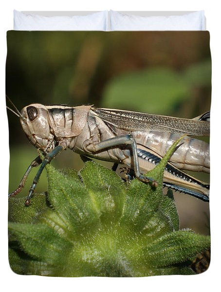 Grasshopper Duvet Cover by Ernie Echols