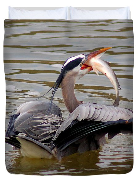 Great Blue With A Drum Duvet Cover by Robert Frederick