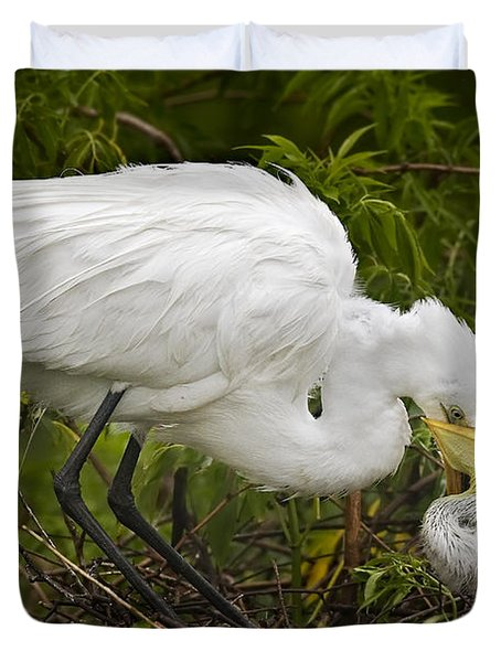 Great Egret and Chick Duvet Cover by Susan Candelario