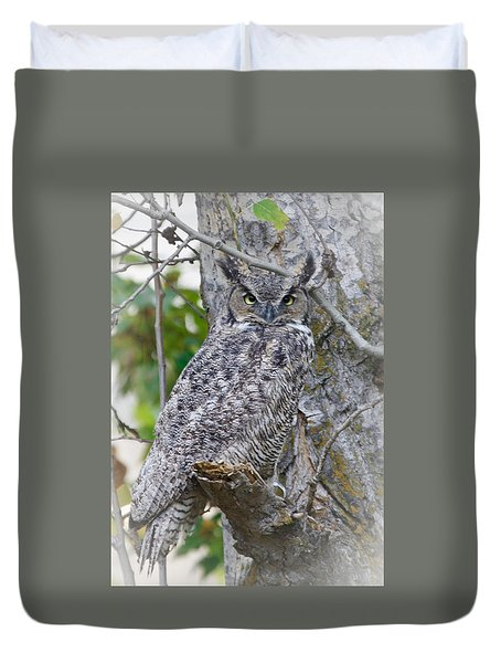 Great Horned Owl II Duvet Cover by Athena Mckinzie