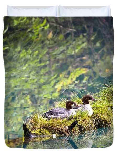 Grebe Podicipedidae Birds Sitting On A Duvet Cover by Richard Wear