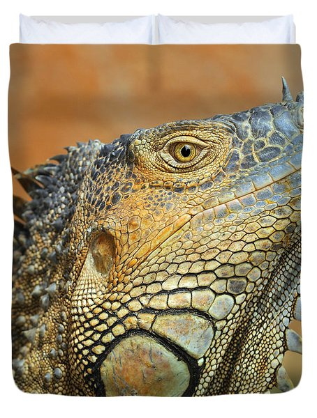 Green Iguana Duvet Cover by Tony Beck